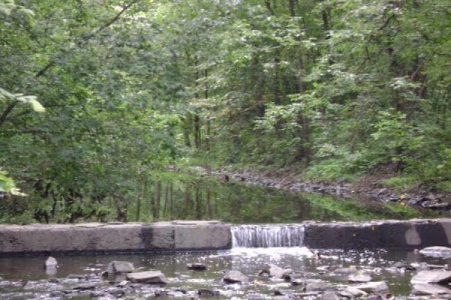 À la découverte du ruisseau Sabrevois et de ses méandres