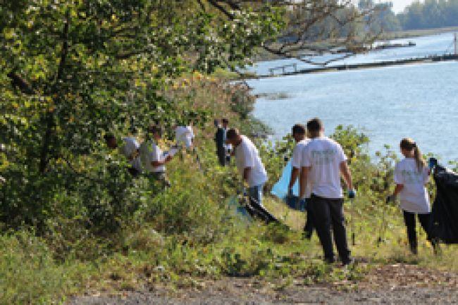 Activité de nettoyage des berges du fleuve Saint-Laurent
