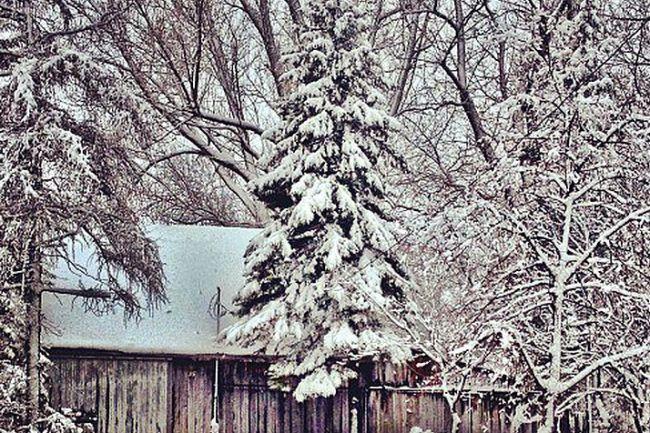 Concours photo Facebook – Mon Boucherville en hiver