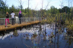 Longueuil investira 2,25 M $ dans l'aménagement du boisé Du Tremblay