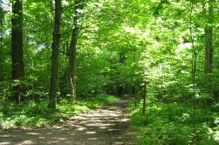 5000 hectares de milieux naturels protégés en Montérégie par Nature-Action Québec