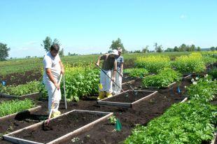Une aide financière de Québec au Centre de recherche Solanema International de Saint-Amable