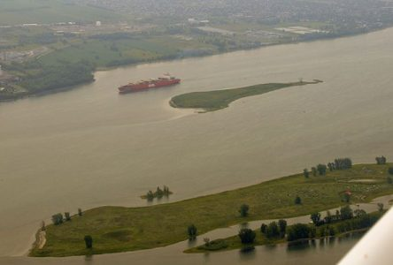 Investissement conjoint de 70 M$ pour la conservation du fleuve Saint-Laurent