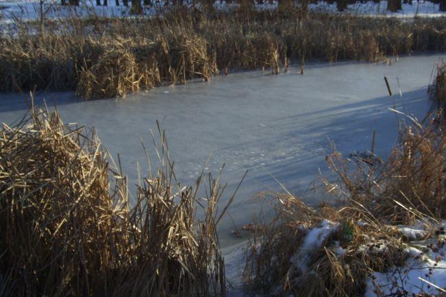 Boucherville demande à l'agglomération de réaliser des travaux d'entretien à la rivière aux Pins