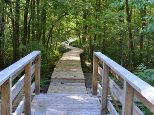 Boucherville exproprie 27 hectares pour agrandir sa zone de conservation