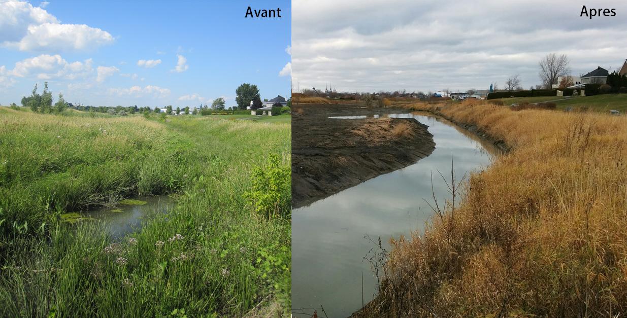 6 000 m² d'habitat du poisson restaurés à Varennes