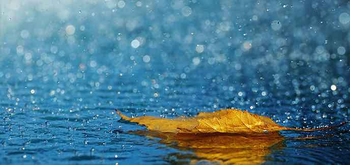 D'importantes quantités de pluie attendues