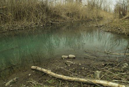 Déversement dans le ruisseau qui traverse le boisé du Tremblay