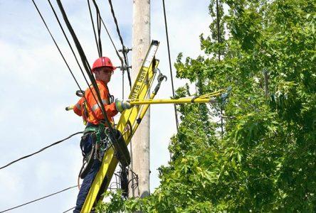 Hydro-Québec entreprend des travaux d'élagage près de son réseau à Sainte-Julie et Varennes