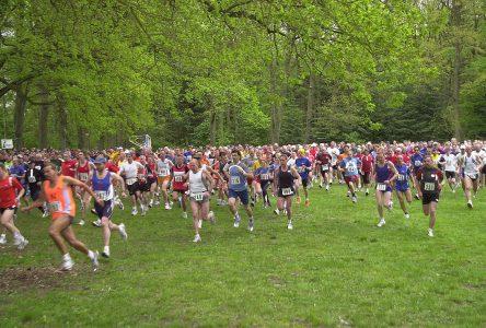 Les jeunes hommes font plus d'activité physique de loisir et de transport que les jeunes femmes