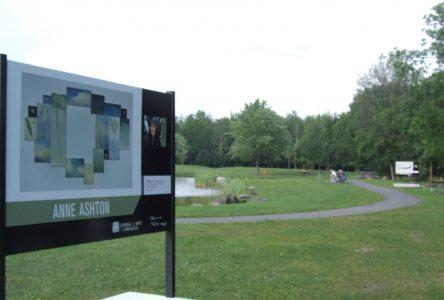 Une fenêtre sur le travail des artistes longueuillois au parc Michel-Chartrand