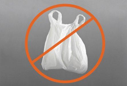 Longueuil interdira l'utilisation des sacs en plastique minces l'an prochain
