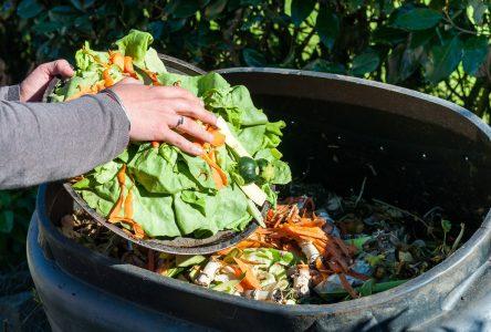 La Ville de Boucherville organise une démonstration pratique sur le compostage