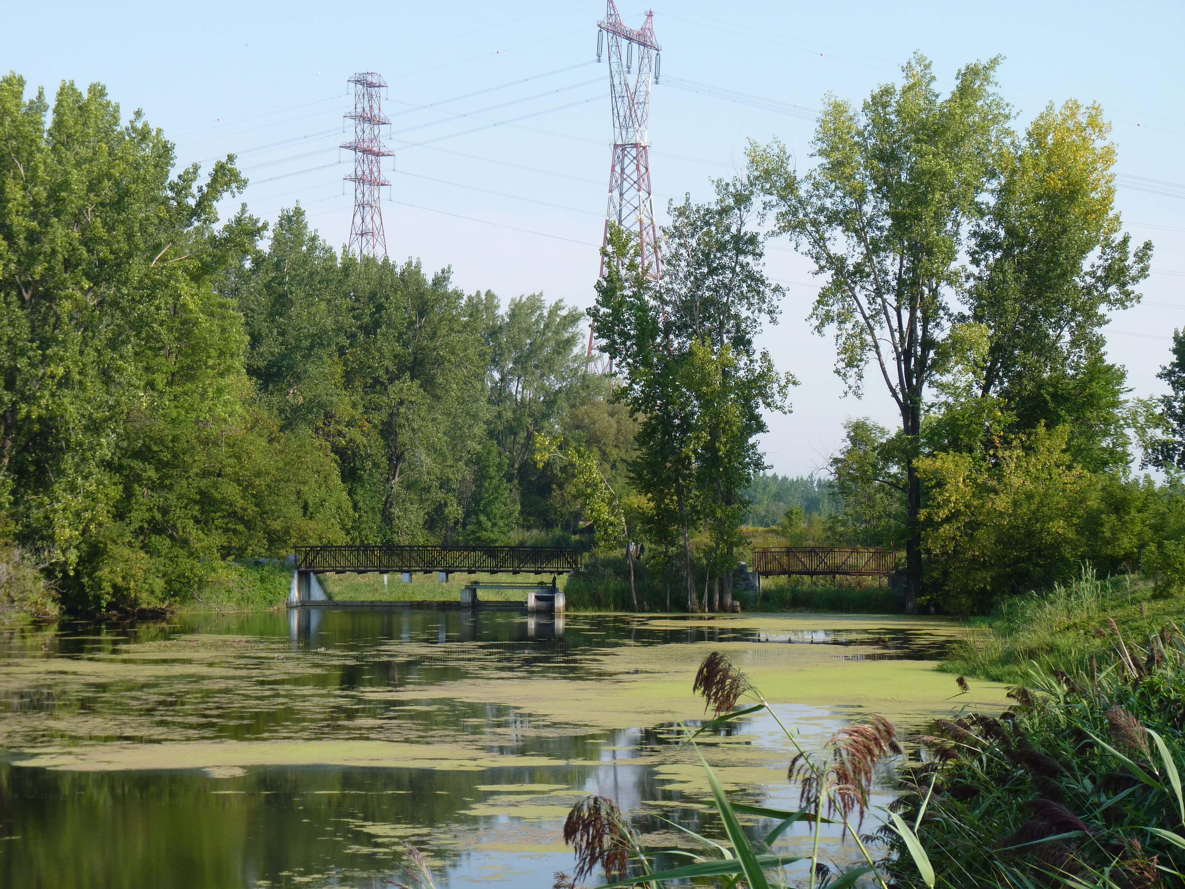 À la découverte du parc de la Frayère le samedi 12 mai