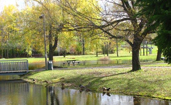 Travaux de revitalisation prévus cet été au parc Michel-Chartrand