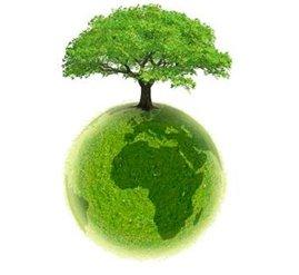 Contrecœur obtient une subvention de 25 000 $ pour planter des arbres sur son territoire