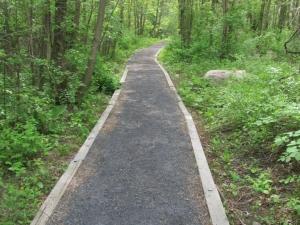 Un nouveau sentier enrichit la réserve naturelle du Boisé-Du Tremblay à Boucherville