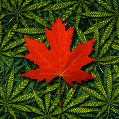 Légalisation du cannabis : Contrecœur interdit la consommation dans les lieux publics