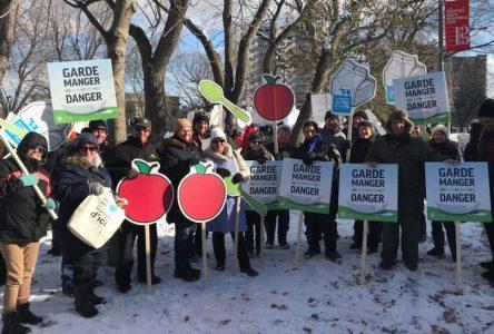 Plus de 550 marcheurs de la Montérégie pour soutenir l'agriculture d'ici