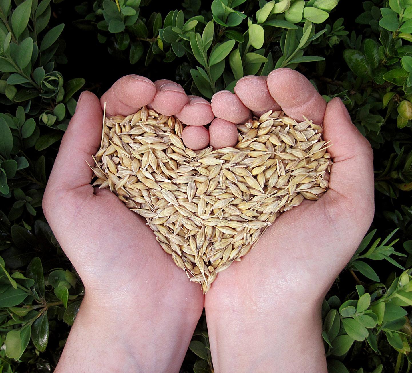 Prévenir le suicide en agriculture en contrant l'isolement