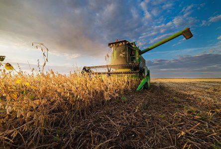 Compensation pour les producteurs de foin durement affectés par la sécheresse de l'été 2018
