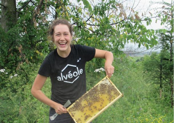 Une séance d'information sur l'apiculture pour souligner le Jour de la Terre