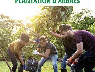 Des groupes de bénévoles planteront 320 arbres dans Collectivité nouvelle