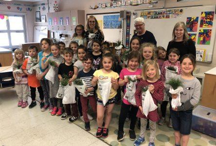 La députée Suzanne Dansereau distribue plus de 200 arbres dans les écoles du comté