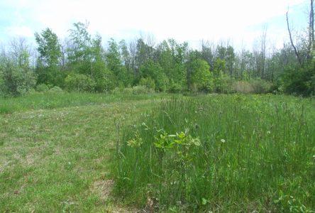 Une terre de 26,6 hectares devient propriété de la Ville de Boucherville
