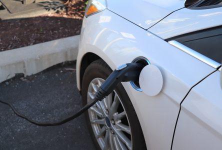 Hausse de 131 % du nombre de véhicules électriques en cinq ans