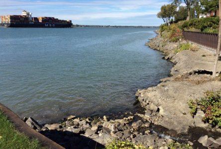 Élections fédérales : un grand débat sur l'environnement le 3 octobre à Varennes
