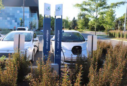 Boucherville : championne de la voiture électrique en Montérégie