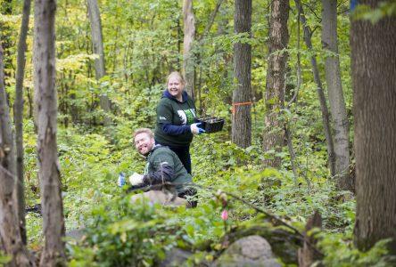 Un groupe de 60 bénévoles plante 300 arbres dans le boisé du Pays-Brûlé à Boucherville