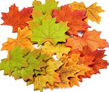 La Ville de Sainte-Julie et la MRC lancent un projet pilote pour le ramassage des feuilles mortes