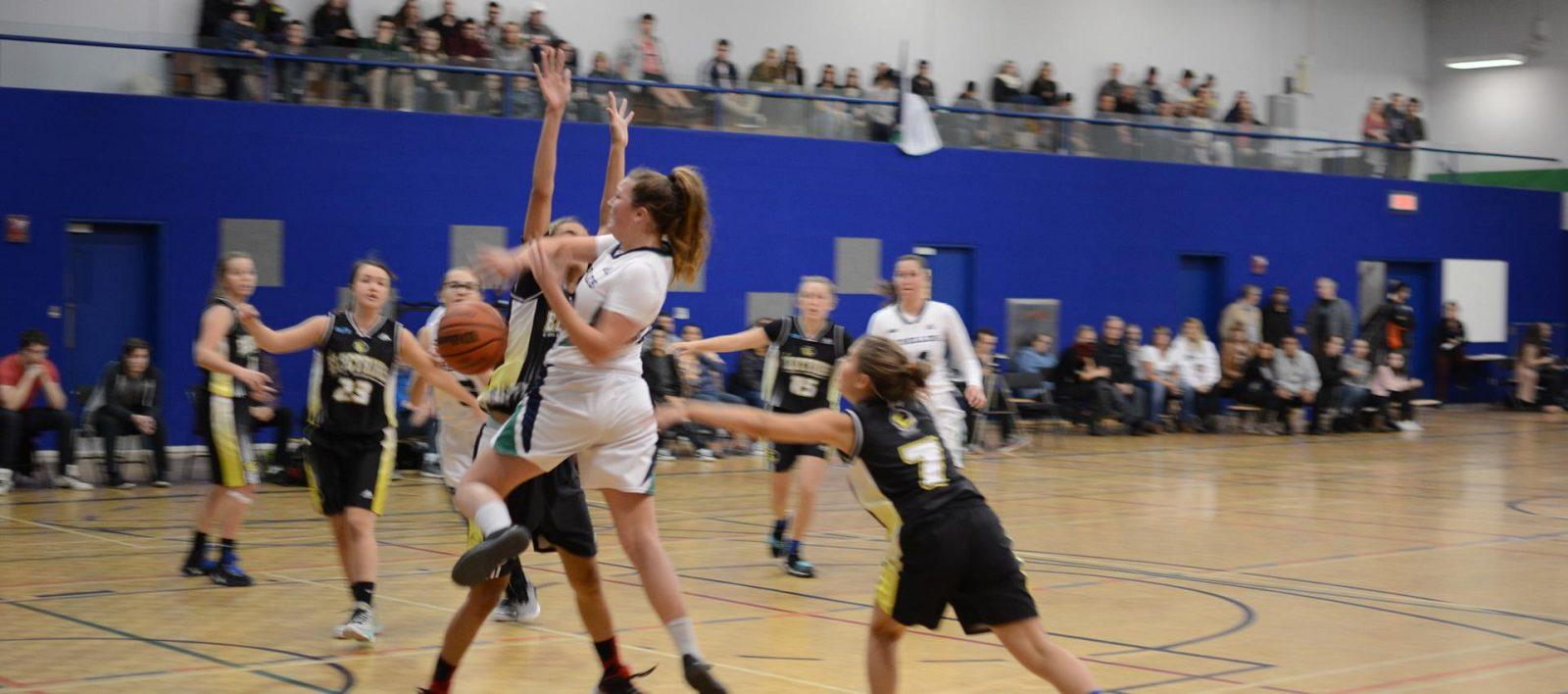 Le Cegep de Sorel-Tracy souhaite le retour du basketball féminin dès la prochaine saison