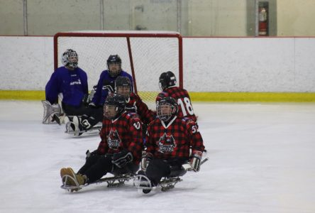Un rendez-vous annuel pour les para-hockeyeurs du Québec