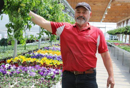 Réouverture des centres d'horticulture: Une saison pas comme les autres