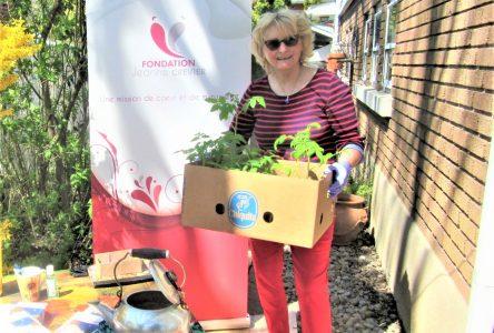 Une histoire inspirante: de semis à un don de 500 $ pour la Fondation Jeanne-Crevier