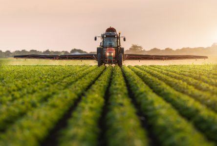 Assemblée publique : bientôt un nouveau règlement sur l'utilisation des pesticides à Contrecœur