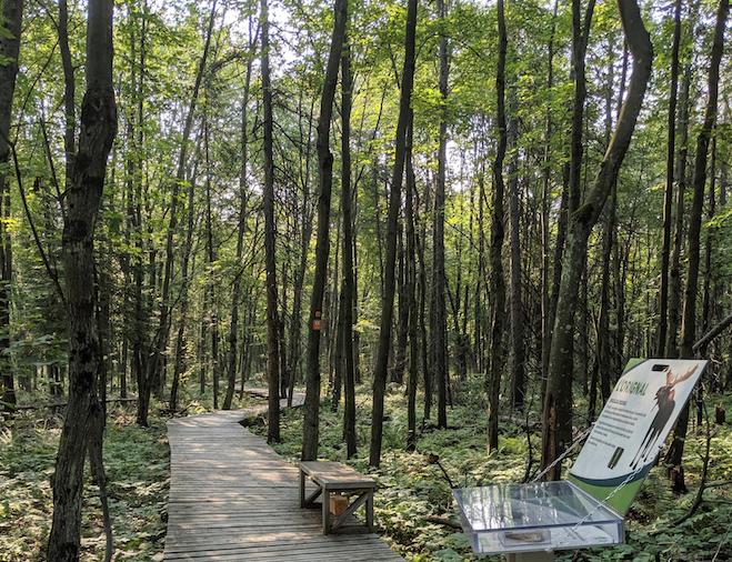 Augmentation de la zone de conservation du Parc régional des Grèves à Contrecœur