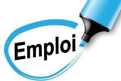 Hausse de l'emploi et recul du taux de chômage en mai