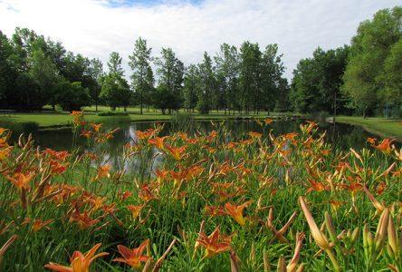 Embarquez dans l'été! : une programmation estivale riche et diversifiée à Longueuil