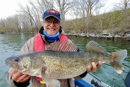 De gros poissons à Boucherville