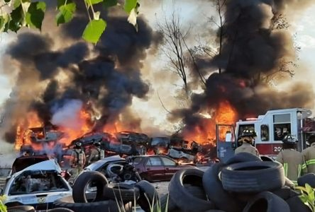 Incendie chez Brassard Pièces D'Autos: Une plante envahissante en cause?