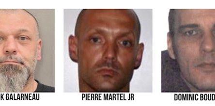 Vente de stupéfiants à des mineurs : quatre arrestations