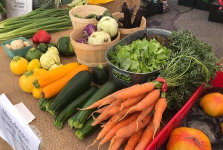 Marché fermier de Verchères: Le rendez-vous dominical à saveur locale
