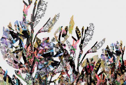 L'exposition Échevelures de Susan St-Laurent prend place à la Galerie Jean-Letarte