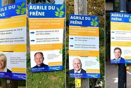 Agrile du frêne : une campagne d'information aux allures électorales