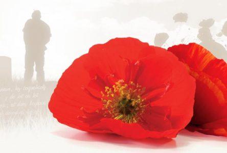 À l'occasion de la semaine des vétérans,  Stéphane Bergeron souhaite rendre hommage à nos anciens combattants