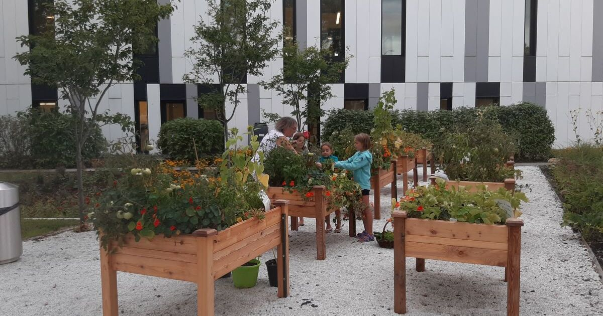 Varennes remporte le prix Reconnaissance en agriculture urbaine des Fleurons du Québec Citoyens